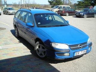 Opel zilonis , 1995