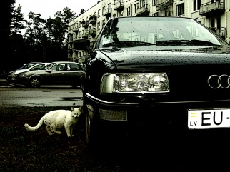 Audi  , 1987