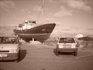 Opel baltais gulbits , 1992