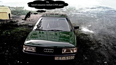 Audi , Веселимся